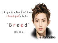 "[::FICEXO::] Breed ""ผสมพันธ์"" Chanyoel x You"